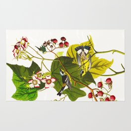 Black and Yellow Warbler Bird Rug