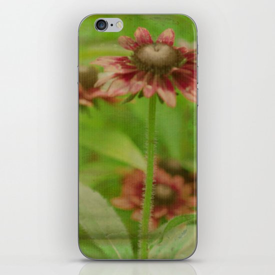 Walk Right Up iPhone & iPod Skin
