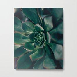 Greenhouse series - Opal Metal Print