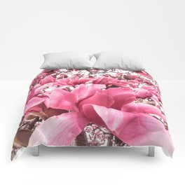 Mellow Magnolia Comforters