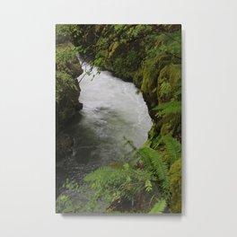Rogue River Metal Print