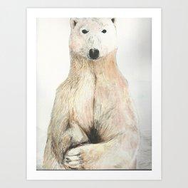 Polar Bear Gaze Art Print