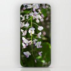 Walking in the Garden iPhone & iPod Skin