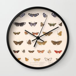Vintage Hand Drawn Scientific Insect Anatomy Colorful Butterfly Illustration Wall Clock