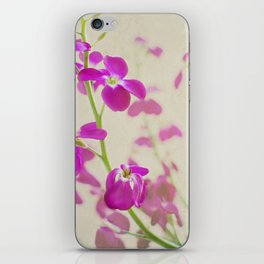 Evening Stock iPhone Skin