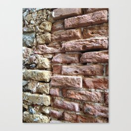 Brick Wall, Coral, St. Thomas, USVI Canvas Print