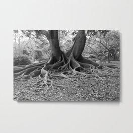 Wise Tree Metal Print