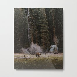 BEAR IN THE FOREST Metal Print