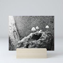 velando el velo Mini Art Print