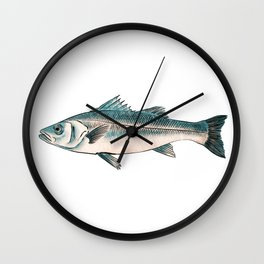 Illustration of Striped bass Wall Clock