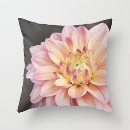 Dahlia Sweet Pixie Throw Pillow