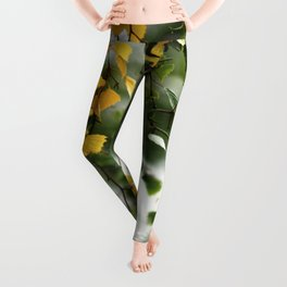 Leaves of gold in the forest of Fontainebleau Leggings