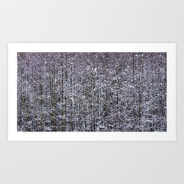 Snow Branches Abstract Art Print