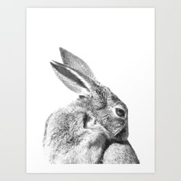 Black and white rabbit Art Print
