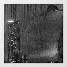 Cheeky possum Canvas Print