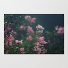 Soft Hues II Canvas Print