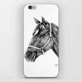 Affirmed (US) Thoroughbred Stallion iPhone Skin
