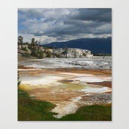 Grassy Spring View Canvas Print
