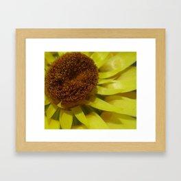 Yellow Spikes Framed Art Print
