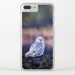Snowy Owl squared Clear iPhone Case