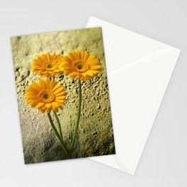 Trio of Gerbera Stationery Cards