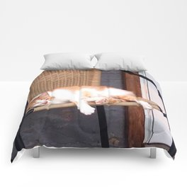 Lazy Cat Comforters