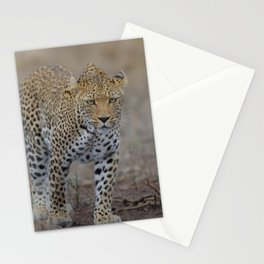 Leopard photo 2 Stationery Cards