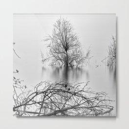 """Peace Tree"". Sunrise at the lake Metal Print"