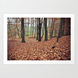 Wald Art Print