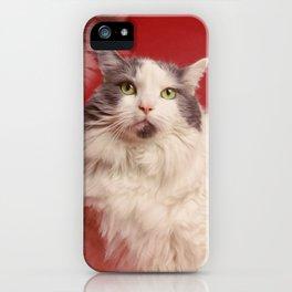 Retro Kitty Portrait iPhone Case
