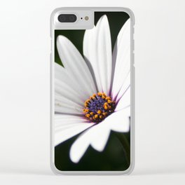 Daisy flower blooming close-up Clear iPhone Case