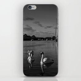 Summer evening swans iPhone Skin