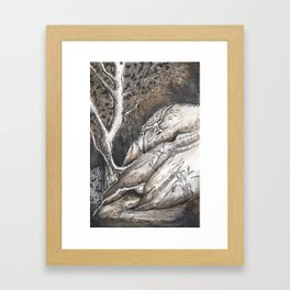 Dolphin Rocks, Summerhill Glen. Framed Art Print