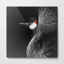 CROWNED CRANE by Monika Strigel Metal Print