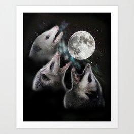 3 opossum moon Art Print