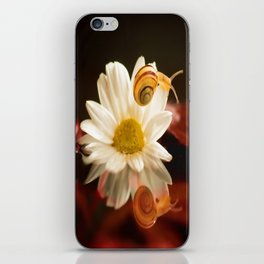 Baby Snail on a flower in the water  iPhone Skin