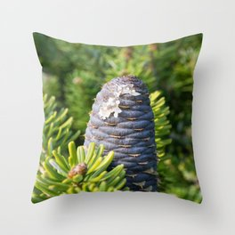 Coniferous tree branch Throw Pillow