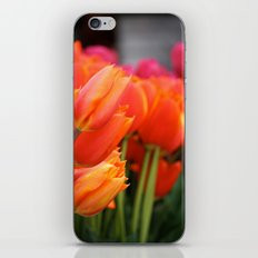 Cheery Tulips iPhone & iPod Skin