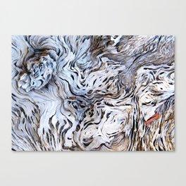 Chaos Canvas Print