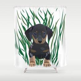 Sausage Dog Design Shower Curtain