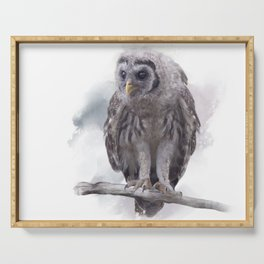 Young Barred Owl Perches on a Branch,Watercolor painting Serving Tray