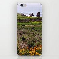 big sur iPhone & iPod Skins featuring Big Sur by Flysmile