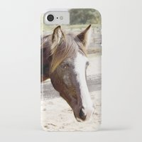 harley iPhone & iPod Cases featuring Harley by Images by Nicole Simmons