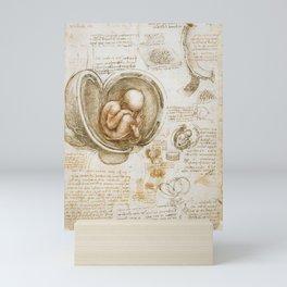 Leonardo da Vinci - Studies of the foetus in the womb Mini Art Print