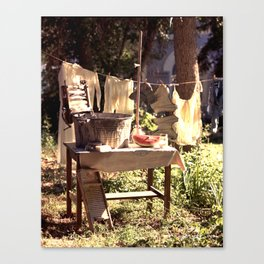 After the Wash Canvas Print