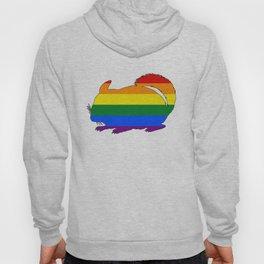 Rainbow Chinchilla Hoody