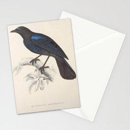 Malabar Whistling Thrush9 Stationery Cards