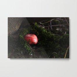 Rosula Metal Print