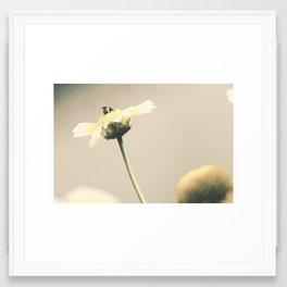 Busy as a bee Framed Art Print