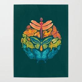 Bugs & Butterflies 2 Poster